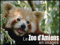 LE ZOO D'AMIENS EN IMAGES